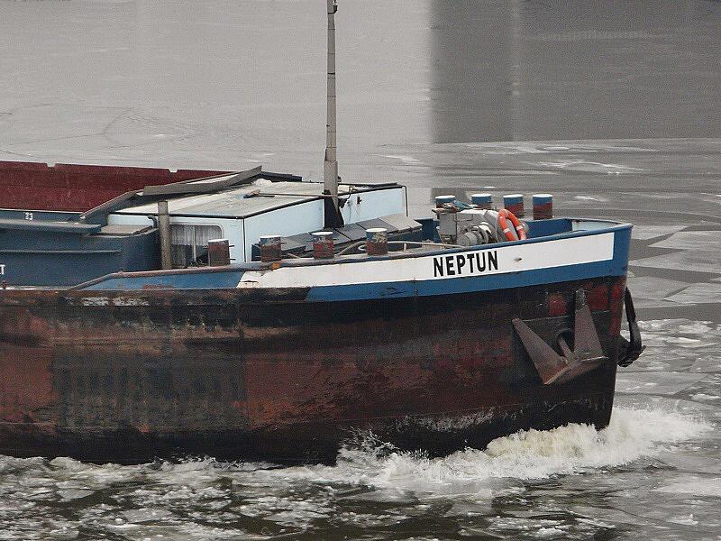 bs neptun 140131 09.25 bug NK 2