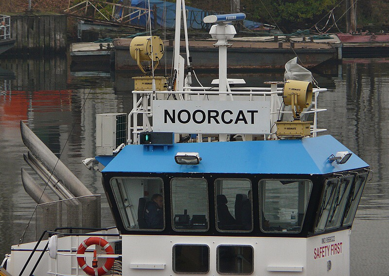 noorcat 04 141013 17.30 NK 2