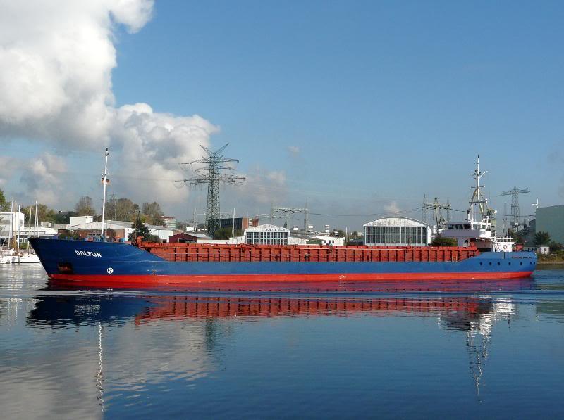 dolfijn1010121200VoeSL